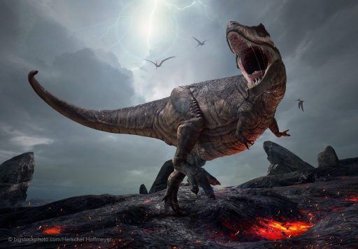 How We Use Our Money - $32-million To buy a T. rex fossil?