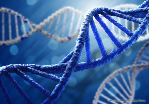 DNA Design and Science