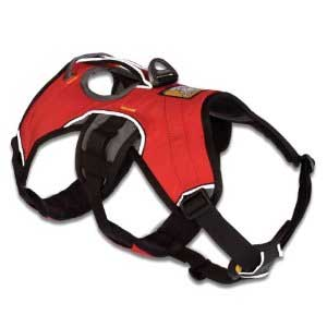 Should You Get The Ruff Wear Harness And Take Your Dog On