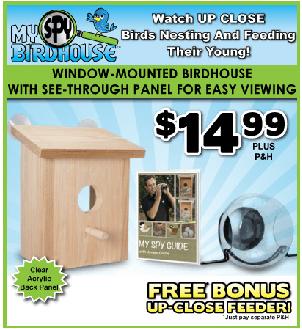 does my spy birdhouse work