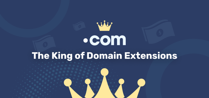 The King of Domain Extensions: .COM
