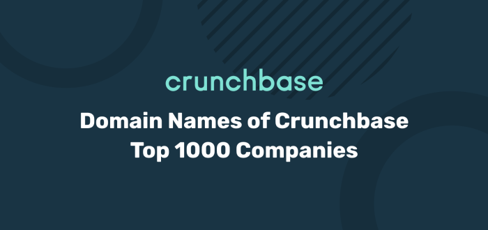 Crunchbase Top 1000 Companies Domain Names