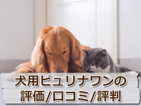犬用ピュリナワンの評価・評判