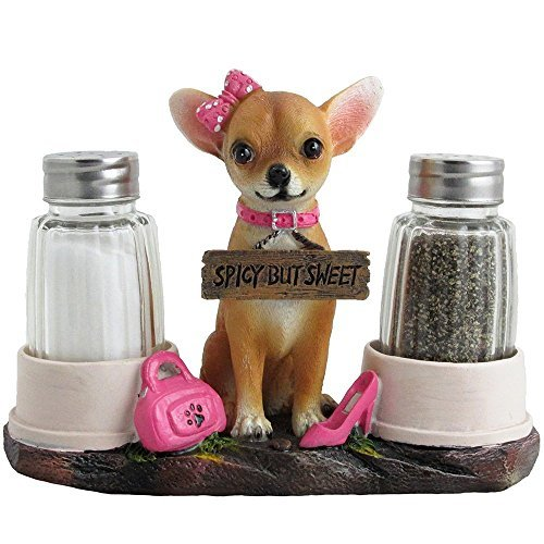 Chihuahuas Video: 1 Hour of Music for Small Dogs. Chihuahuas, Yorkshire Terriers, Poms.