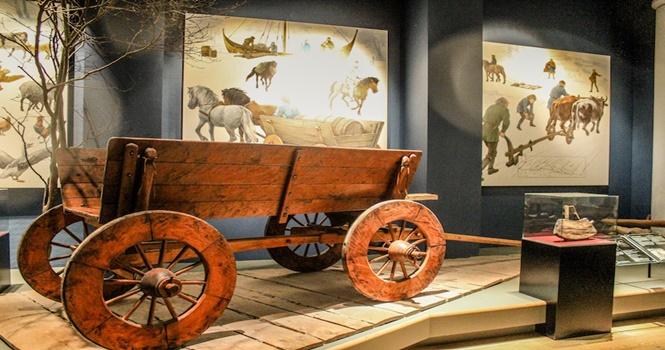 Lindholm Hoeje Müzesi