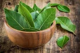 Defne Yaprağı ile Gelen Doğal Sağlık