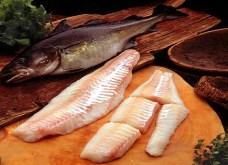 Morina Balığı Faydaları