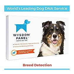 Wisdom Panel DNA Test