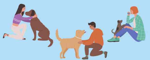 5.Do Dogs love us back