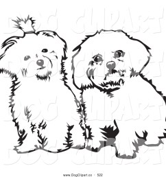 vector clip art of a pair of cute maltese dogs sitting side by side and looking curiously at the viewer on a white background [ 1024 x 1044 Pixel ]