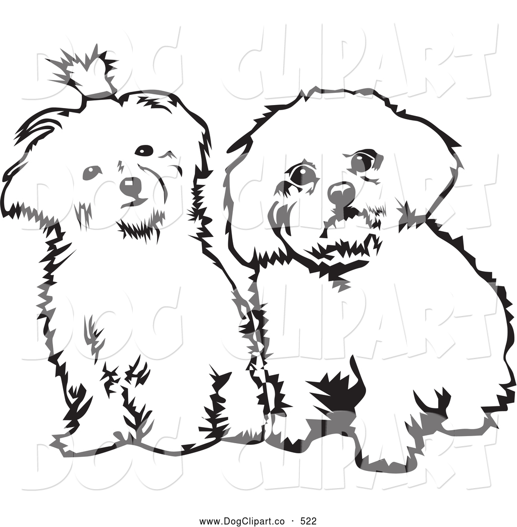 hight resolution of vector clip art of a pair of cute maltese dogs sitting side by side and looking curiously at the viewer on a white background