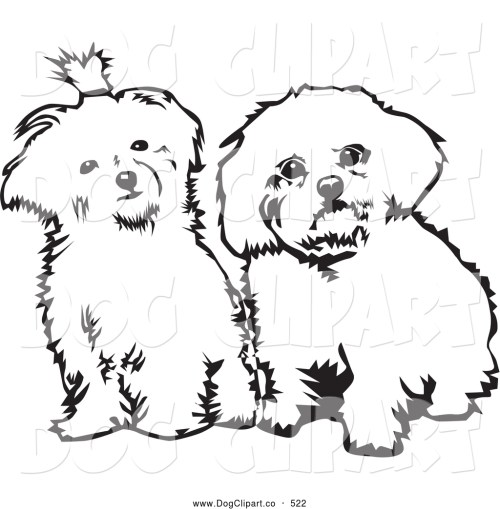 small resolution of vector clip art of a pair of cute maltese dogs sitting side by side and looking curiously at the viewer on a white background