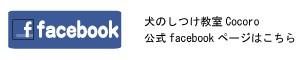 facebook_blog
