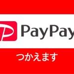 おそばせながら、、、PayPay使えます。