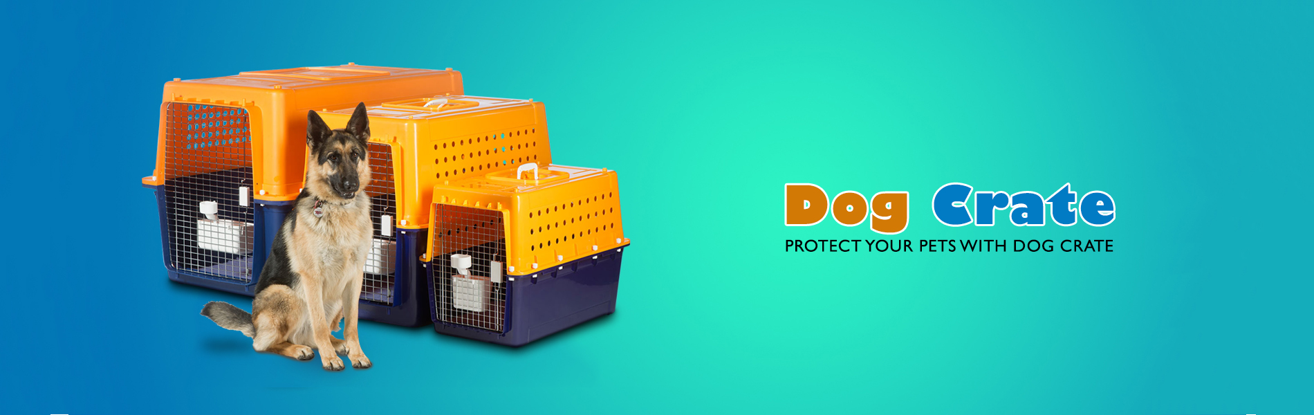 dog crate official