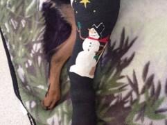 Snowman Bandage Art