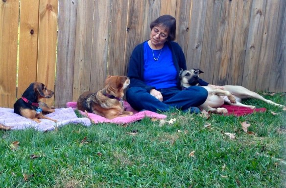 Eileen and three dogs