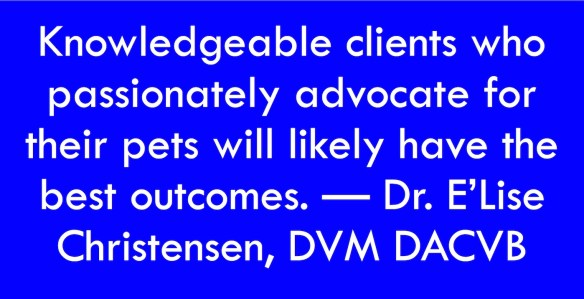 Text regarding dog life expectancy: Knowledgeable clients who passionately advocate for their pets will likely have the best outcomes. -- Dr. E'Lise Christensen, DVM DACVB