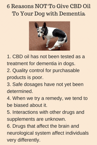 Poster: 6 Reasons NOT to Give CBD Oil To Your Dog with Dementia