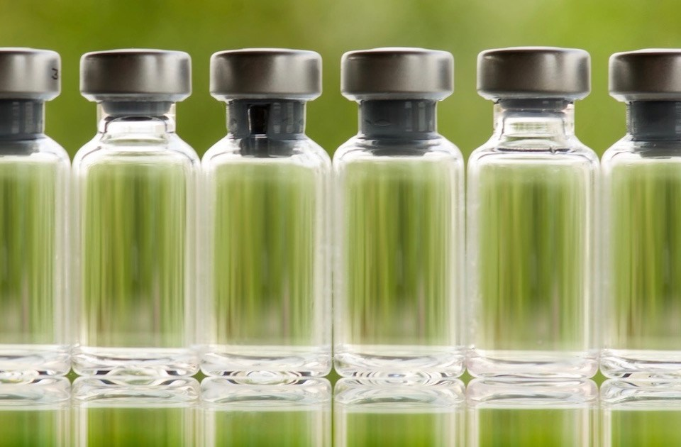 green fluid in six flasks in a row
