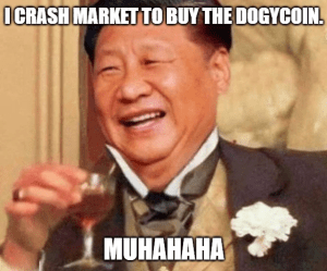 dogecoin is the best investment