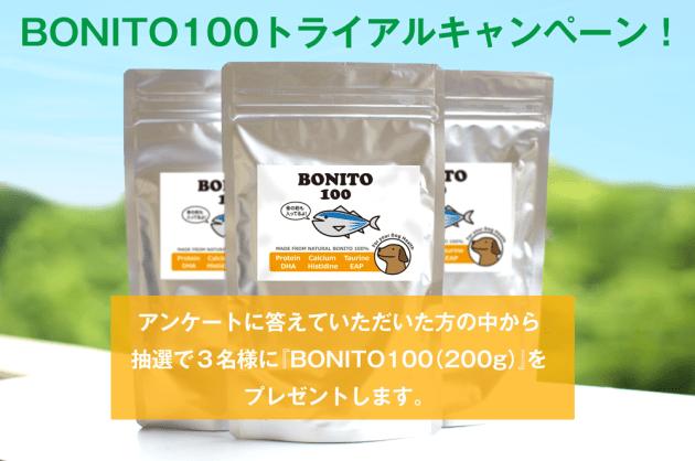 bonito100アンケート