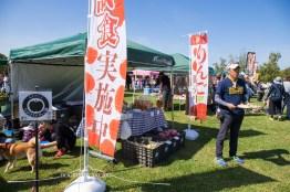 DOG FES IWAKI 2017_3909
