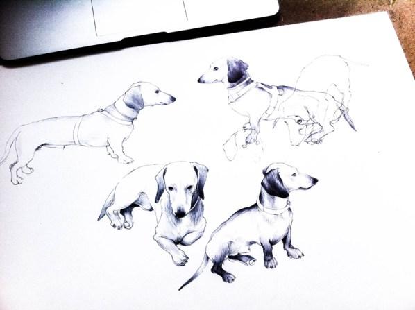 Bocetos de Eros creados por Martina Billi.