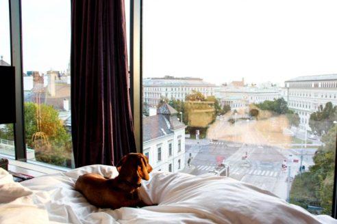 25 hours hotel Viena