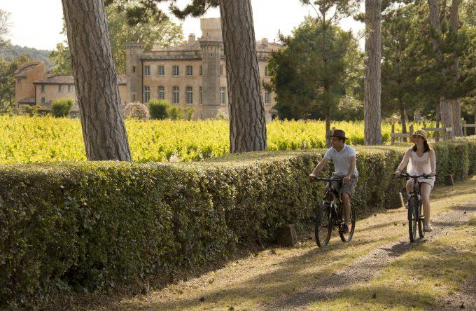 Paseo en bicicleta por el viñedo.