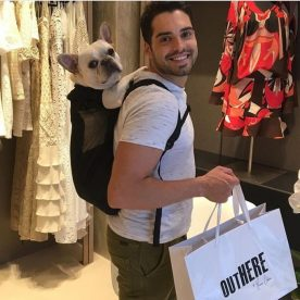 Bulldog de shopping.
