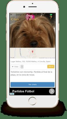 Capturas de pantalla de la app Wizapet.