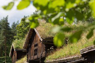 Tejados antiguos del pueblo noruego.