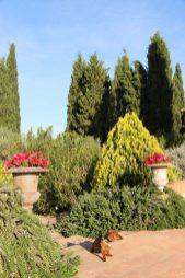 Eros en los jardines del hotel