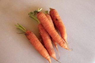 Zanahorias recién sacadas de la tierra.