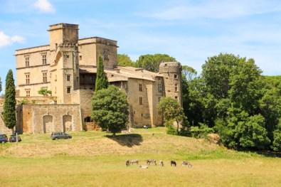 Castillo y burros en Lourmarin.