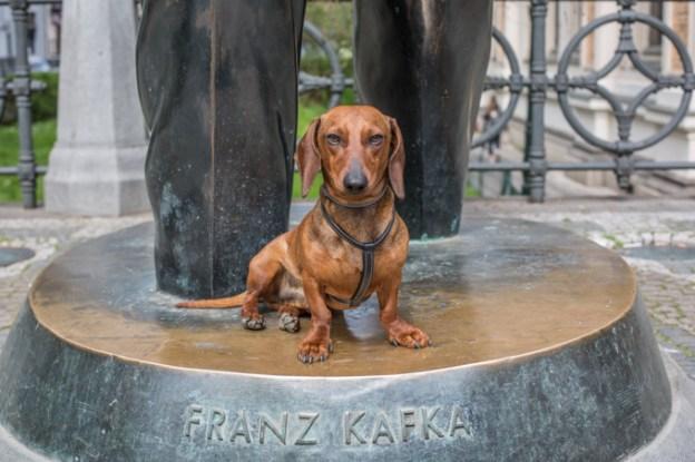 Eos y Franz Kafka.