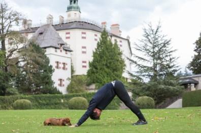 A Eros le gusta estar a mi lado cuando practico yoga.