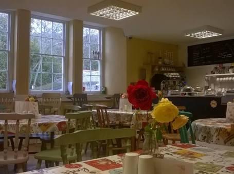 The Cuckoo Cafe