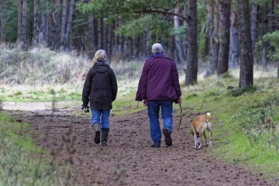 owners walking dog