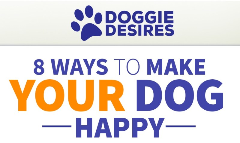 ways to make your dog happy