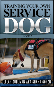 Service dog guide 2