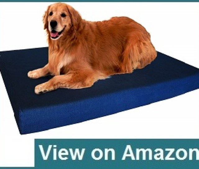 Dogbedless Memory Foam Review