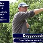 doggycoach 2.0