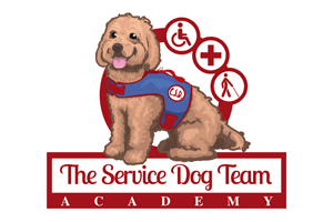 The Service Dog Team