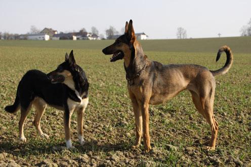 Cleo und Mascha