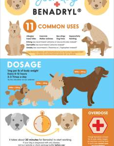 Benadryl for dogs infographic pinterest also uses side effects dosage overdose vet approved rh doghealthcoach