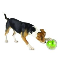 Vote in the Dogington Post Awards: Favorite Dog Toy
