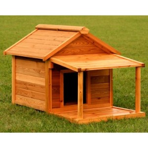 Building Unique Dog House for Your Dogs  Dog Kennels and Dog House for Pets