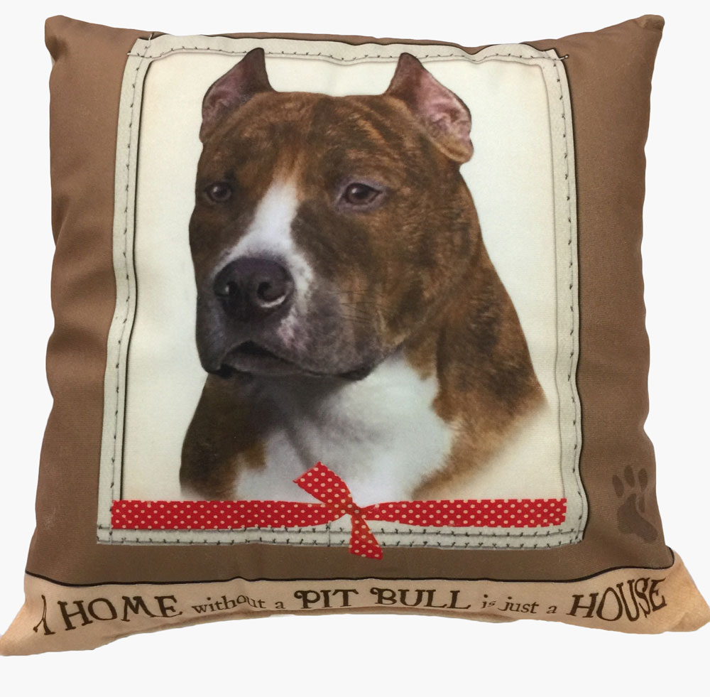 Pitbull Pillow 16x16 Polyester